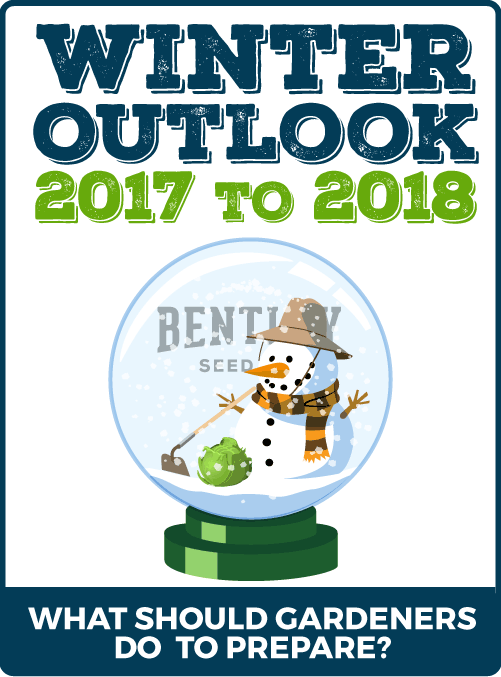 Winter Outlook 2017 to 2018