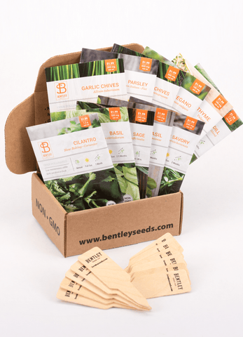 Culinary Herbs Seed Packet Kit - Bentley Seeds