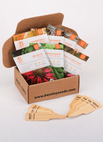 Medicinal Herbs Seed Packet Kit - Bentley Seeds