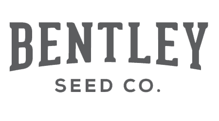 Bentley Seeds