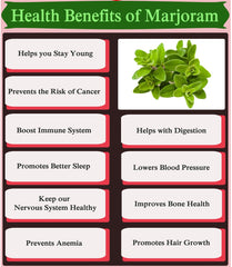 The Many Health Benefits of Marjoram For Your Skin