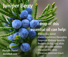 5 Benefits and Uses of Juniper Berry on Your Skin