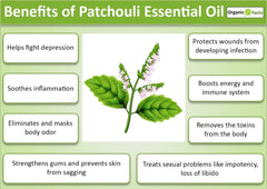 The Benefits and Uses of Patchouli