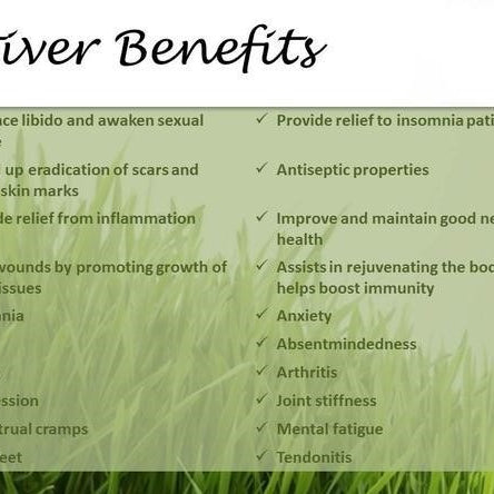 Where Is It From? The Benefits and Uses of Vetiver