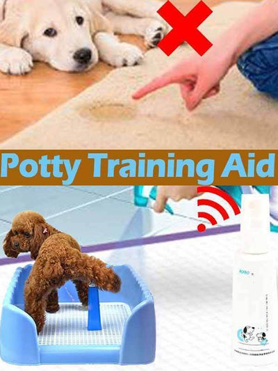 Potty Training Aid - absoluteyours