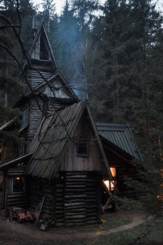 dark cottage with in the forest