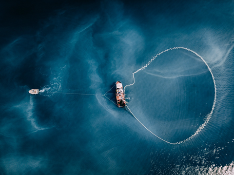 Sustainable Fishing Practices