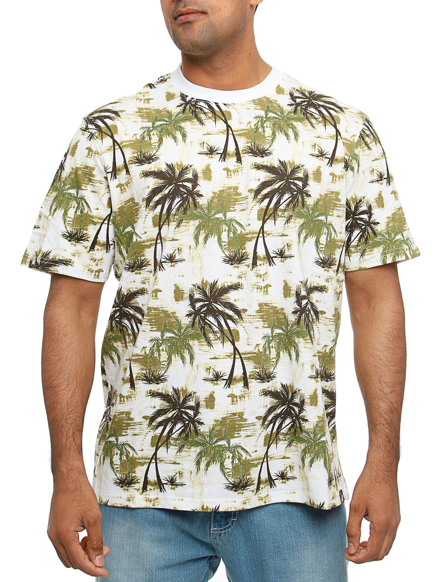Dickies Honolulu T-Shirt Green