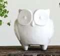 Owl Planter - White