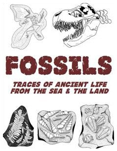 Fossils: Traces of Ancient Life Form The Sea & The Land - Workbook for 4th-9th Grade