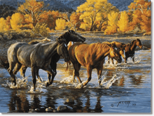 Load image into Gallery viewer, HORSES OF THE CREEK