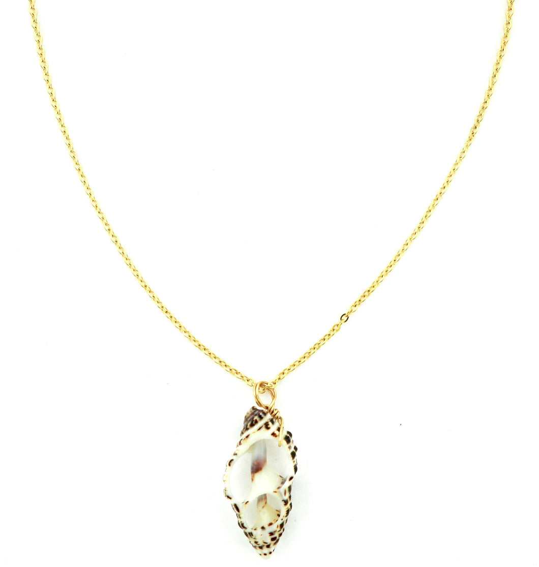 Beachy Genuine Shell Necklace