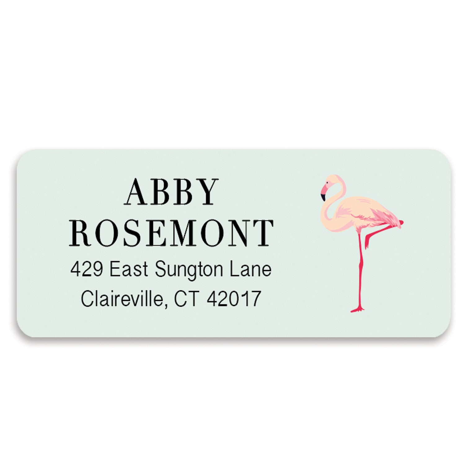 Flamingo Mint Address Labels | Abby