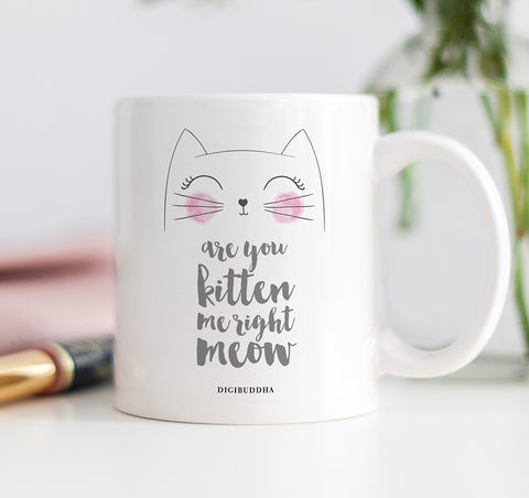 Are You Kitten Me Right Meow Mug