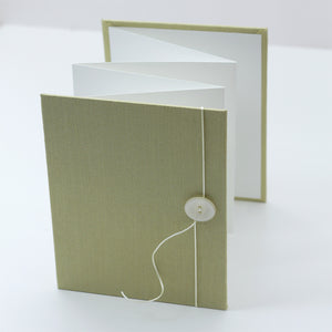 Accordion Book Lemongrass Silk
