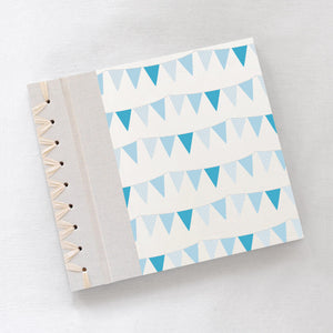 Baby's First Book Blue Bunting