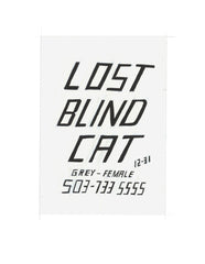 #89 LOST BLIND CAT