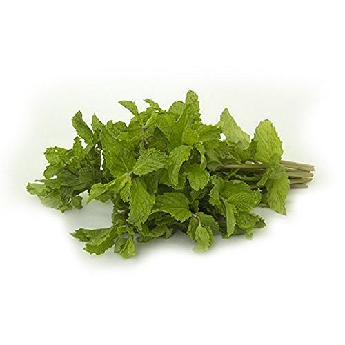 Fresh Produce Mint Leaves 1 Bunch (80 g - 90 g)