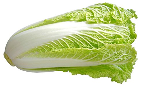 Fresh Produce Chinese Cabbage 900g-1kg Pack