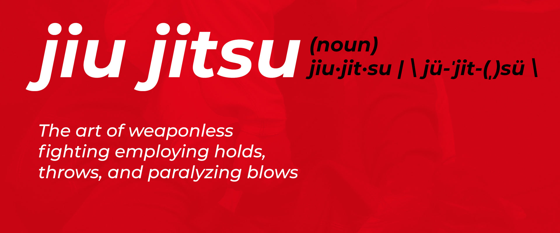 Here's What All The Common Portuguese and Japanese Words in BJJ Mean