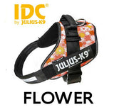 Floral IDC Powerharness Julius K9 Canada