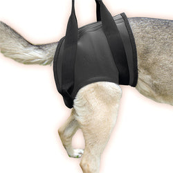 Rehabilitation Harness – Hind Size Medium (16NEO-HS/M) - JULIUSK9® CANADA