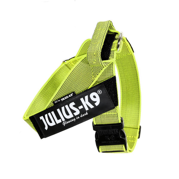 IDC® Belt Harness