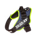IDC® Powerharness - Denim with Neon Edge