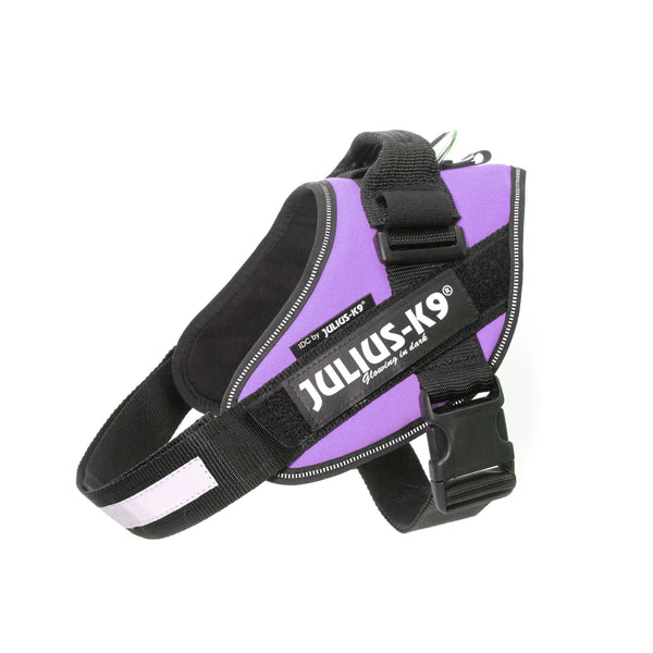 IDC® Powerharness - Purple