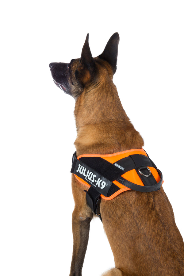 IDC® Tactical Stealth® Dog Harness UV Orange - Size 1