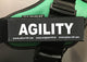 """AGILITY"" Large / Small Harness Labels - Set of 2 Labels / patches"