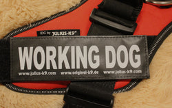 """Working Dog"" Large Harness Labels - Set of 2 Labels / patches - JULIUSK9® CANADA"