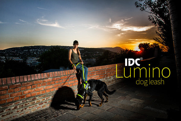 IDC Lumino Leash 1.2 Meters / 4 Ft with Handle - Glow in the Dark - Pink - JULIUSK9® CANADA