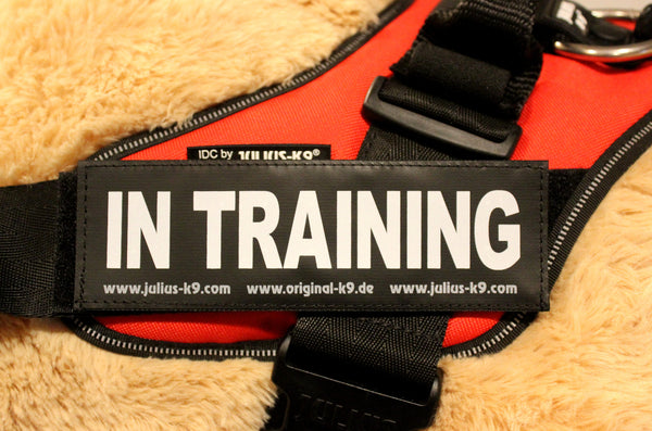 """In Training"" Large / Small Harness Labels - Set of 2 Labels / patches - JULIUSK9® CANADA"