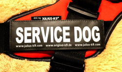 """Service Dog"" Large Harness Labels - Set of 2 Labels / patches - JULIUSK9® CANADA"