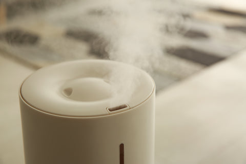 Humidifier with mist