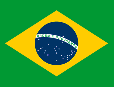 "Brazil Flag #2705 1.75""X 2.25"" - Temporary Tattoo"