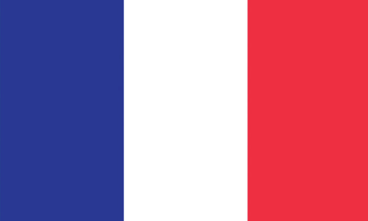 "France 1.5"" x 2.5"" - Flag Face Sticker"