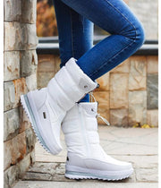 Women's Warm Fur Plush Winter Boots - ByDivStore