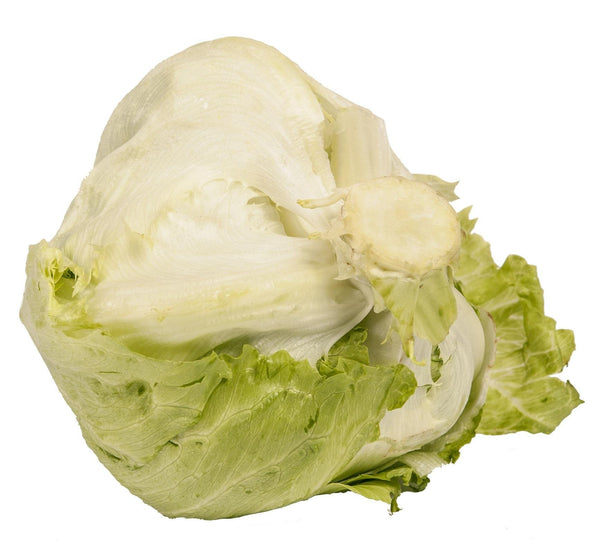 Pantry Packer Lettuce Iceberg Head Each