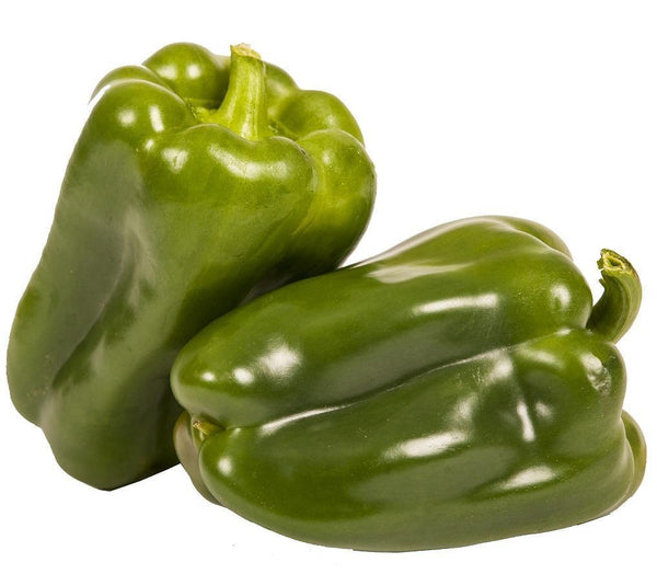 Pantry Packer Capsicum Green Each