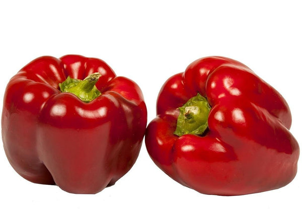 Pantry Packer Capsicum Red Each