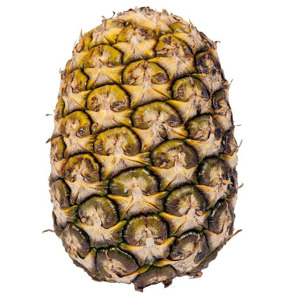 Pantry Packer Pineapple Small Topless Each
