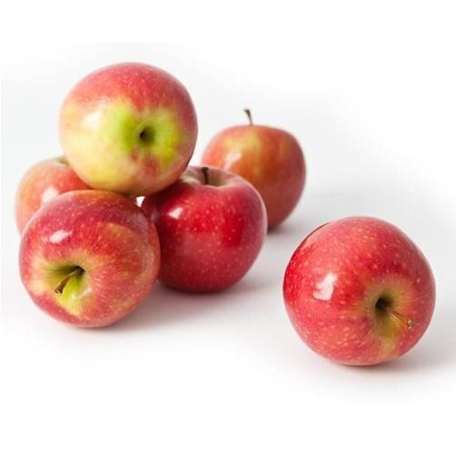 Pantry Packer Apples Pink Lady 1Kg
