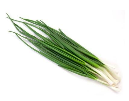 Pantry Packer Spring Onion Bunch