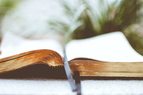 A heavy book is needed to press the flowers © Ben White/Unsplash