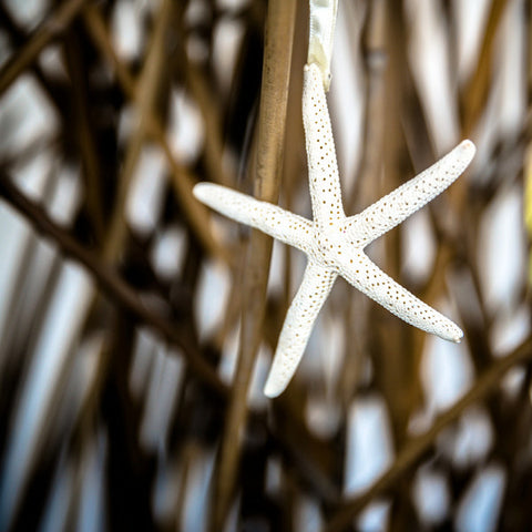 Wedding Prop Starfish on a Ribbon Single