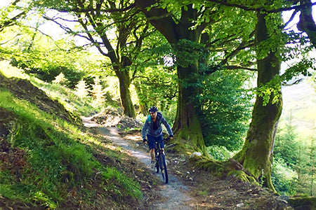 slieve bloom tours in offaly