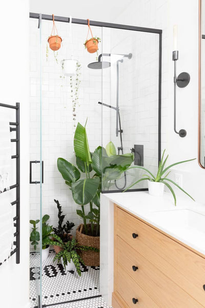 artificial potted plants in bathroom