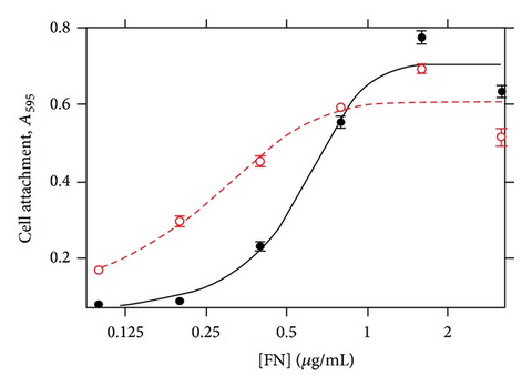 MGP enhances cell attachment to fibronectin. (a) The y-axis is HeLa cell binding indicated as absorbance at 595nm. The x-axis is the log of fibronectin concentration from 0 to 3.3μg/mL either with 3μg/mL MGP (◯) or control buffer (●). MGP did not enhance cell attachment for 0 fibronectin (not shown, logarithmic plot).